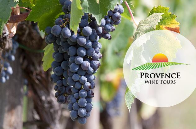 Ancien IRCE provence wine tour