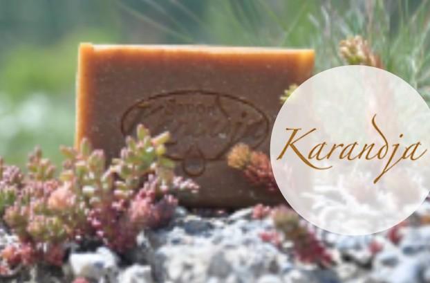 image-logo-karandja
