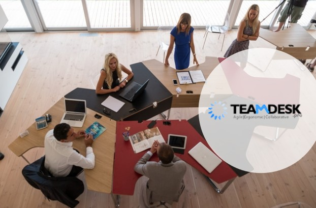 image-logo-teamdesk