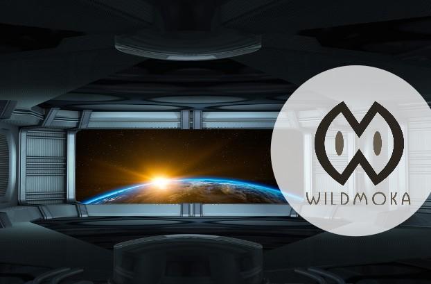 image-logo-wildmoka